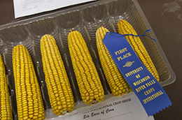 Corn Display 2014 Ag Technology Contest