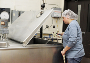 Dairy Plant Cheese Making Michelle