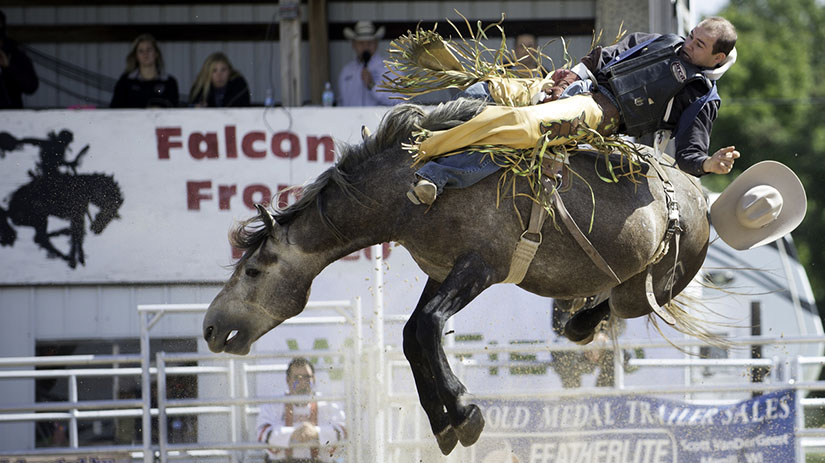 Falcon Frontier Days Rodeo Horse Rider