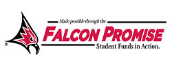 FalconPromise Small