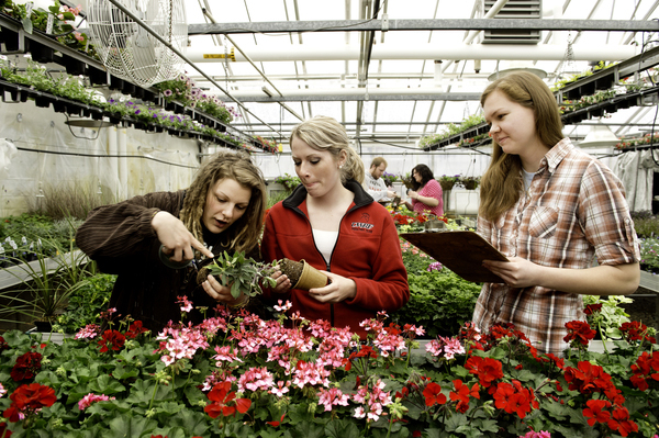 Horticulture Students in Greenhouse