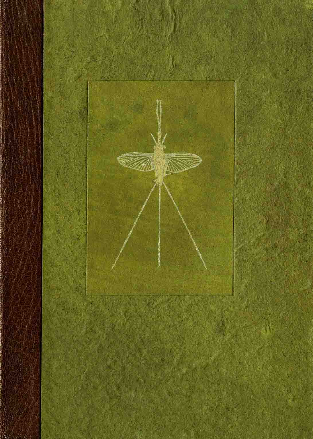 Mayflies of the Driftless Region, 2005