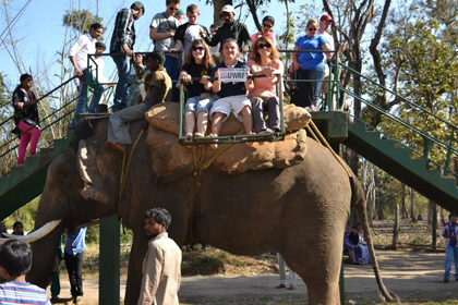 We all got to take elephant rides… For 25 cents a person!