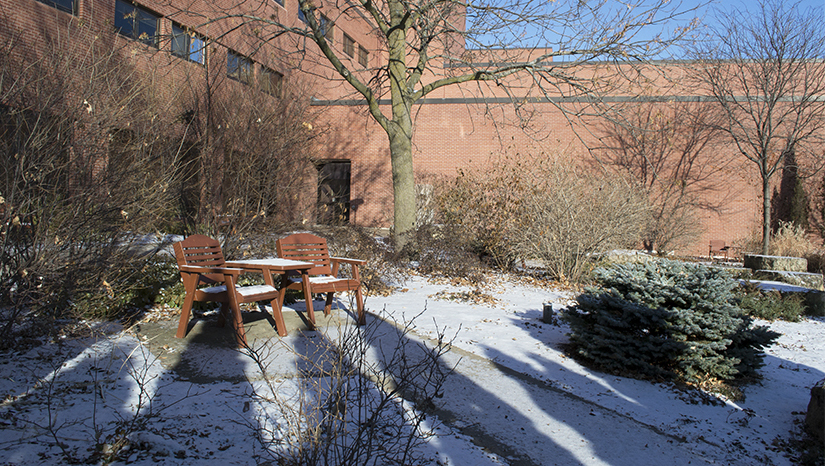 Dahlka Meditation Garden clothed in long winter shadows and a dusting of snow