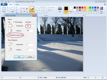 Set Image Size in Pixels in Paint