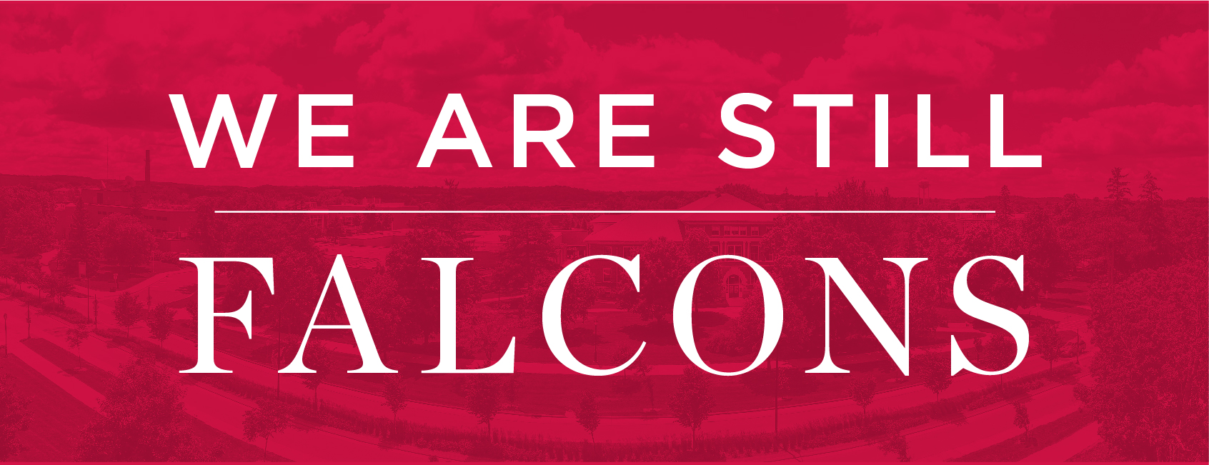 Still Falcons_Facebook_Header_812x312px-02