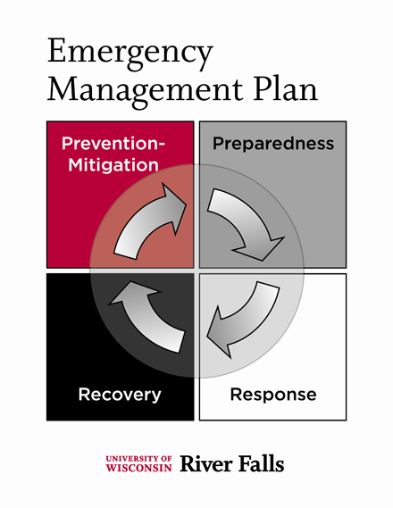 Diagram showing Emergency Plan Process