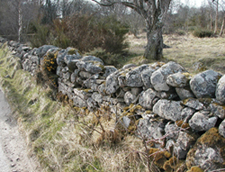 Scottish Stone Wall