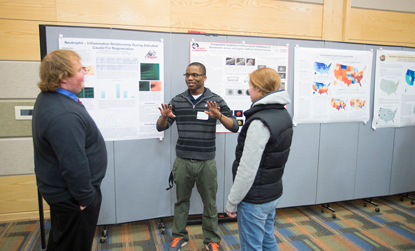 This is a photo from one of the URSCA Fall Gala Research Presentations. A student uses their hands to discuss their undergraduate research to two Gala attendees. The student presenter is wearing glasses, a black and gray striped shirt, and green pants.