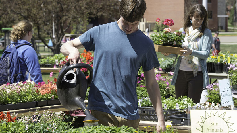Horticulture Plant Sale