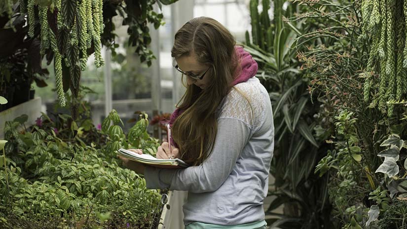 PES Student in the Greenhouse Nov 2014