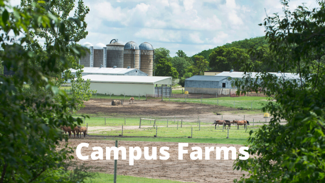 Campus Farms