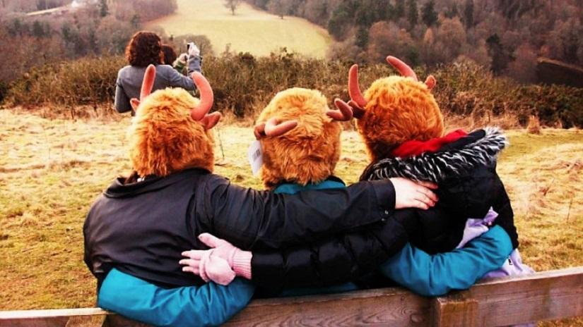 hairy coo heads