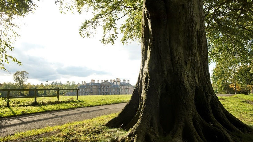 Dalkeith House with tree