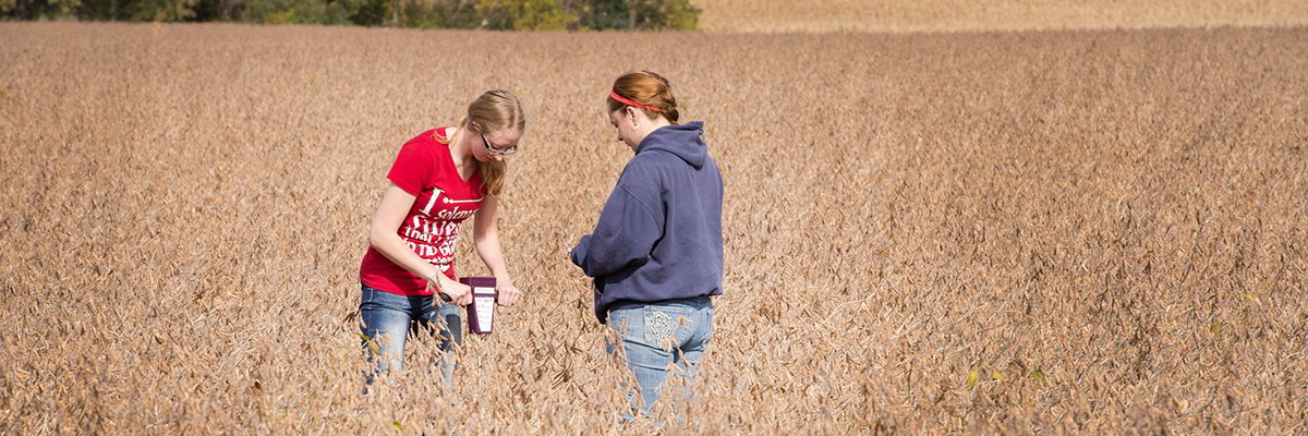 Students conducting a soil physics lab in the field