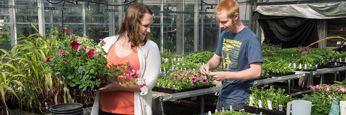 Horticulture students participating in plant sale